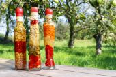 Colorful pickled vegetables in preserving glass — Stock Photo