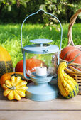 Pumpkins and pickled vegetables in preserving glass  — Stock Photo