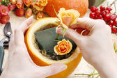 How to make a Thanksgiving centerpiece - step by step — Stock Photo