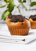 Poppy-seed muffins — Stock Photo