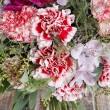 Bouquet of red carnations and purple orchid flowers — Stock Photo #60399763