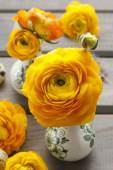 Floral decoration of yellow persian buttercup flowers (ranunculu — Stock Photo