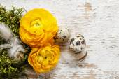 Yellow persian buttercup flowers (ranunculus) on wooden backgrou — Stock Photo