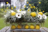 Modern floral arrangement with white gerbera flowers and lemon f — Stock Photo