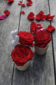 Red roses in ceramic vases on rustic wooden table — Stock Photo
