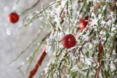 Christmas background: red balls, christmas tree, snow — Stock fotografie