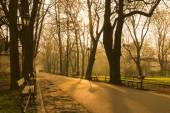 Planty - city park in Krakow, Poland. — Stock Photo