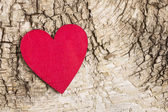 Red heart on bark background. Symbol of love — Stock Photo