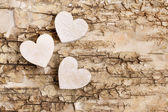 Wooden heart on bark background. Symbol of love — Fotografia Stock