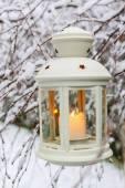 Bílé lucerny visící na větvi, Zimní krajina — Stock fotografie