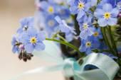 Bouquet di fiori Nontiscordardime — Foto Stock