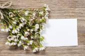Grußkarte unter Chamelaucium Blumen (Dickblatt) — Stockfoto