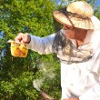 Experienced senior apiarist holding honeycomb from small wedding beehive in apiary — Stok fotoğraf #52993987