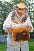 Anziano apicoltore e sciame di API in apiario — Foto Stock