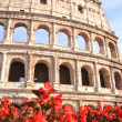 Monumental ancient Colosseum in Rome against blue sky, Italy — Stock Photo #56370801