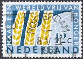 Yellow corn on a postage stamp. — Stock Photo