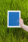 Hand holding digital tablet on a grass field — Stock Photo