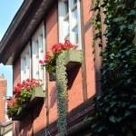 Quedlinburg — Stock Photo #63540737