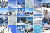 Collage - Winter Happiness — Stock Photo