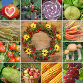 Collage - fruits and vegetables — Stock Photo