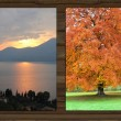 Collage - four seasons on wooden board background - V — Stock Photo #53638913