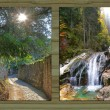 Collage - four seasons on wooden board background - II — Stock Photo #53640525