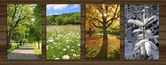 Collage - four seasons on wooden board background - VII — Stock Photo