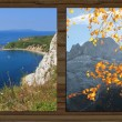Collage - four seasons on wooden board background - VIII — Stock Photo #53891161
