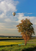 Rural landscape and hotair balloon — Stock Photo
