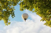 Tree crown and floating hotair balloon — Stock Photo