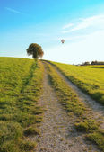 Walkway through rural landscape, hotair balloon — Stock Photo
