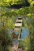 Tranquil pond with old boardwalk — Stock Photo