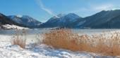 Idyllic schliersee lake in upper bavaria, winter landscape — Stock fotografie