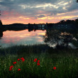 Sunset at lake seeon, lake shore with red poppies — Stock Photo #69331969