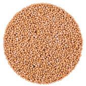 Mustard Seeds Isolated on White — Stock Photo
