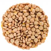 Lentils Circle Isolated on White Background — Stock Photo