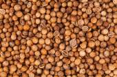 Coriander Seeds Extreme Closeup — Stock Photo