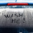 Wash Me Words on a Dirty Car Window — Stock Photo #54399655