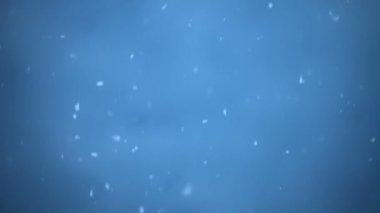 Magical Fairy Snowstorm — Vídeo stock