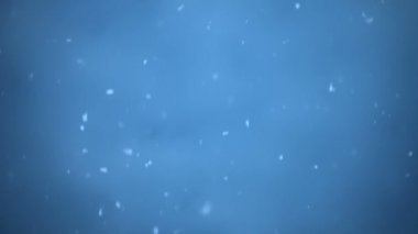 Magical and Fairy Blue Snowy Background — Vídeo stock