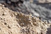 Heap of construction sand closeup — Stock Photo