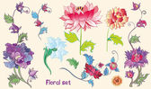 Flowers vector set with lotuses and peonies. asian theme — Stock Vector