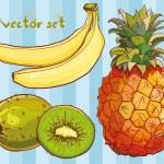 Vector set with banana, kiwi, pineapple — Stock Vector #63262227