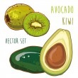 Vector set with avocado and kiwi — Vector de stock  #67814091