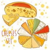Vector set with cheeses. Cheese collection. — Stock Vector