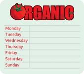 Organic schedule — Stock Vector