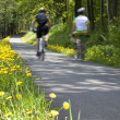 People cycling through countryside — Stock Photo #63663979