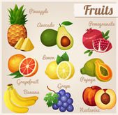 Set of food icons. Fruits. — Stock Vector
