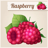 Detailed Icon. Raspberry. — Stock vektor