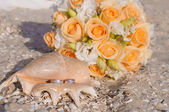 Wedding rings in a shell on the beach — Stock Photo